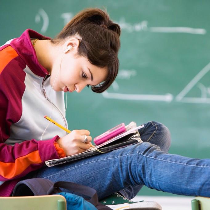 Преподаватель для подготовки к ОГЭ или ЕГЭ поможет, если вы живете за границей