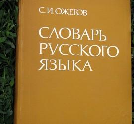 Дистанционный репетитор ЕГЭ по русскому языку