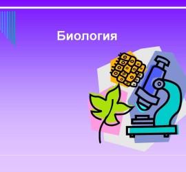 Репетитор по скайпу биология
