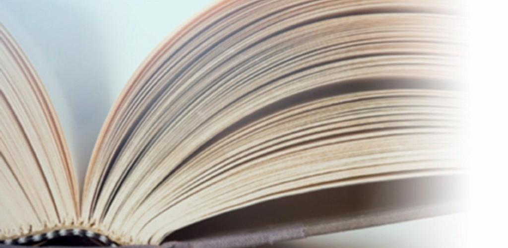 Онлайн подготовка по литературе
