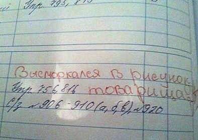Смешные записи в школьных дневниках 7